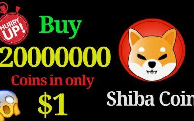 Shiba Inu (SHIB) den nya Dogecoin?
