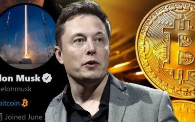 Elon Musk Tweets och Bitcoin kursens reaktioner